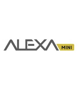 LICENCE LOOK LIBRARY ALEXA MINI